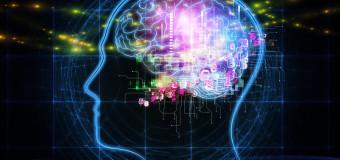 Află vârsta reală a creierului tău