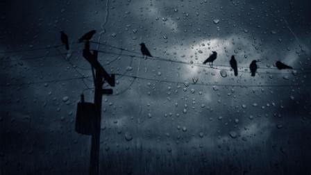 rain_wallpaper_good_background_503_high_quality