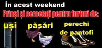 Prinși și cercetați pentru furturi de uși, păsări sau perechi de pantofi, în acest weekend