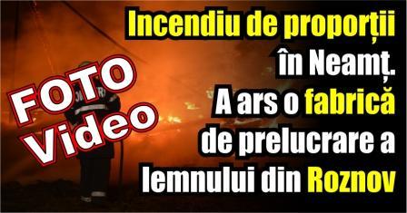 Incendiu de proporții în Neamț. A ars o fabrică de prelucrare a lemnului din Roznov