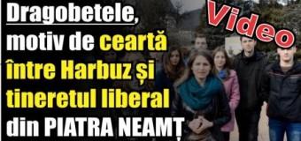 Dragobetele, motiv de ceartă între Harbuz și tineretul liberal din Piatra Neamț