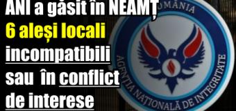 ANI a găsit în Neamț 6 aleși locali aflați în incompatibilitate sau conflict de interese