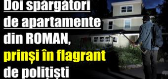Doi spărgători de apartamente din Roman, prinși în flagrant de polițiști