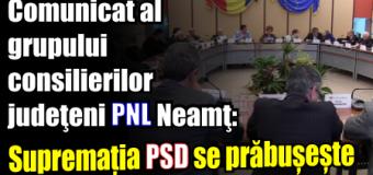 Grupul consilierilor judeţeni PNL Neamţ: Supremația PSD se prăbușește