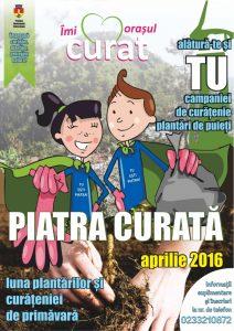 Piatra curata 2016