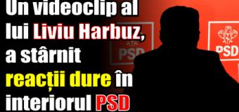 Un videoclip al deputatului Liviu Harbuz, a stârnit reacții dure în interiorul PSD.