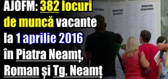 AJOFM: 382 locuri de muncă vacante la 1 aprilie 2016 în județul Neamț