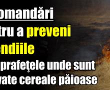ISU Neamț: Recomandări pentru a preveni incendiile pe suprafeţele unde sunt cultivate cereale păioase
