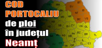 COD PORTOCALIU de ploi în județul Neamț