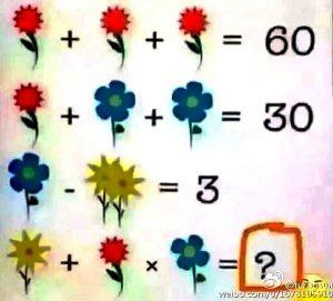image-2016-06-17-21086733-0-problema-matematica-flori