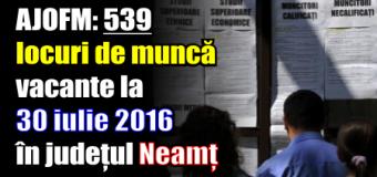 AJOFM: 539 locuri de muncă vacante la 30 iulie 2016 în județul Neamț