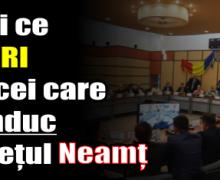 Declarațiile de avere ale consilierilor județeni – Neamț