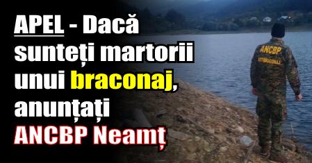 APEL – Dacă sunteți martorii unui braconaj, anunțați ANCBP Neamț