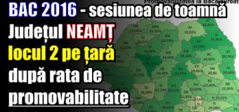 Așa da! Neamțul, în topul județelor cu cea mai mare rată de promovare la BAC 2016 – sesiunea de toamnă