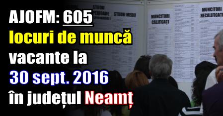 AJOFM: 605 locuri de muncă vacante la 30 septembrie 2016 în județul Neamț
