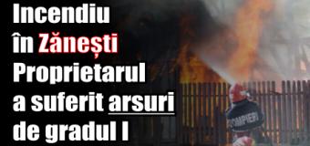 Incendiu la o magazie din Zănești. Proprietarul a suferit arsuri de gradul I
