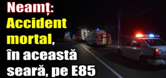 Neamț – Accident mortal, în această seară (2 noiembrie) pe E85