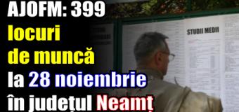 AJOFM: 399 locuri de muncă vacante la 28 noiembrie 2016 în județul Neamț