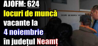 AJOFM: 624 locuri de muncă vacante la 4 noiembrie 2016 în județul Neamț