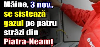 Mâine, 3 noiembrie, se sistează gazul pe patru străzi din Piatra-Neamț