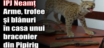 IPJ Neamț – Arme, trofee și blănuri în casa unui braconier din Pipirig