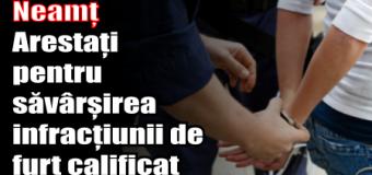 Neamț – Arestați pentru săvârșirea infracțiunii de furt calificat