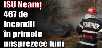 ISU Neamț – 467 de incendii în primele unsprezece luni