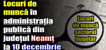 Locuri de muncă în administrația publică din județul Neamț – 10 decembrie