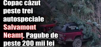 Copac căzut peste trei autospeciale ale Salvamont Neamț. Pagube de peste 200 mii lei