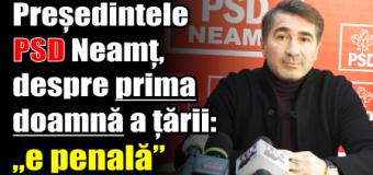 """Președintele PSD Neamț, despre soția lui Iohannis: """"doamna e penală"""""""