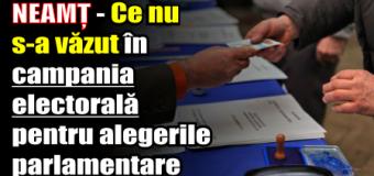 NEAMȚ – Ce nu s-a văzut în campania electorală pentru alegerile parlamentare