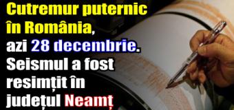 Cutremur puternic în România, azi 28 decembrie. Seismul a fost resimțit în județul Neamț