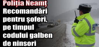 Poliția Neamț – Recomandări pentru șoferi, pe timpul codului galben de ninsori