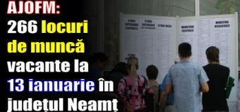 AJOFM: 266 locuri de muncă vacante la 13 ianuarie 2017 în județul Neamț