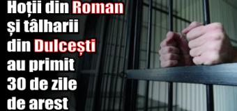 Hoții din Roman și tâlharii din Dulcești au primit 30 de zile de arest