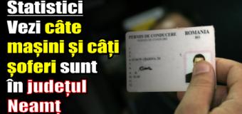 Statistici – Vezi câte mașini și câte permise de conducere sunt în județul Neamț