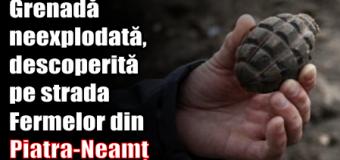 Grenadă neexplodată, descoperită pe strada Fermelor din Piatra-Neamț