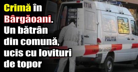 Crimă în Bârgăoani. Un bătrân din comună, ucis cu lovituri de topor