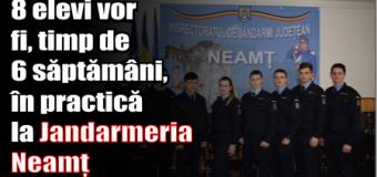 8 elevi vor fi, timp de 6 săptămâni, în practică la Jandarmeria Neamț